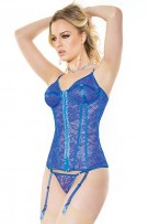 Coquette Lace and Sheer Bustier