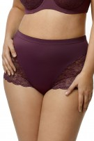 Elila Stretch Lace & Microfiber Cheeky Panty