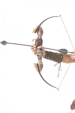 Be Wicked Bow and Arrow Set