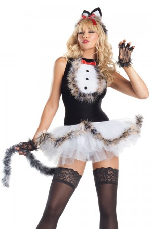 Be Wicked Kissable Kitty Kat Costume