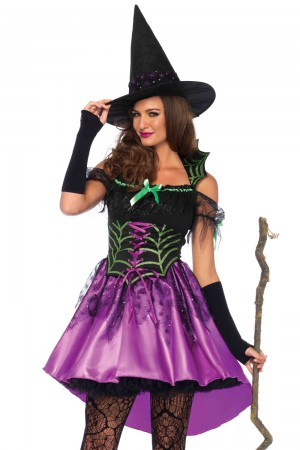 Leg Avenue 2-Piece Spiderweb Witch Costume